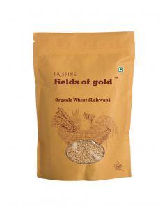 Pristine Organics Fields of Gold Organic Wheat (Lokwan)-1kg