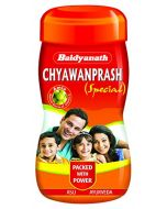 Baidyanath Chyawanprash Special-500gm